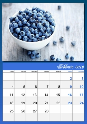 2019 monthly lunar calendar example